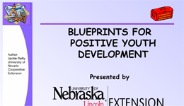 Blueprints for Positive Youth Development